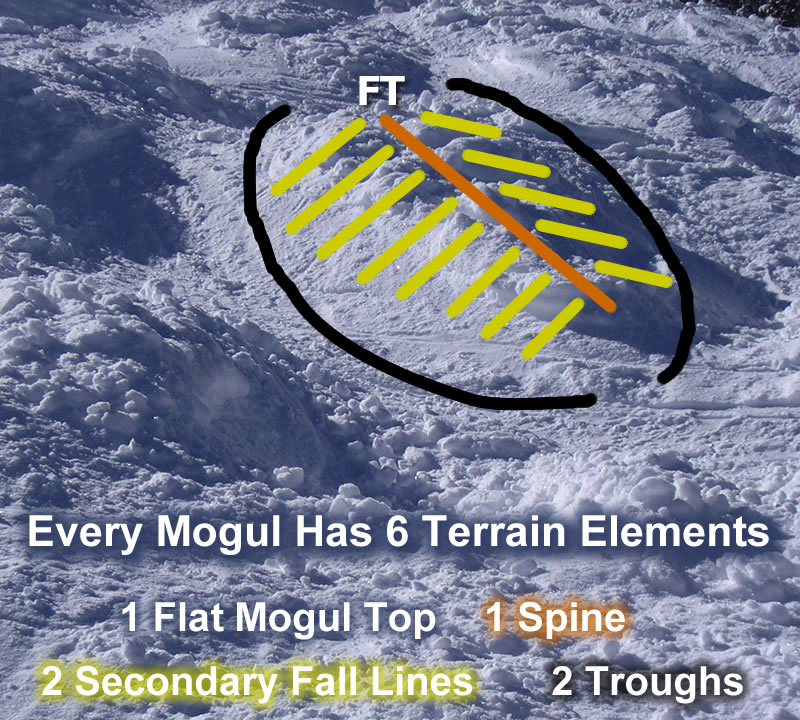 Photo Of 6 Mogul Terrain Elements 800x720